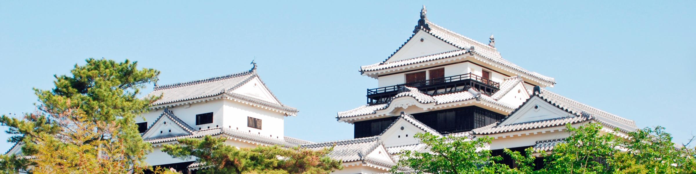 愛媛県内観光促進事業
